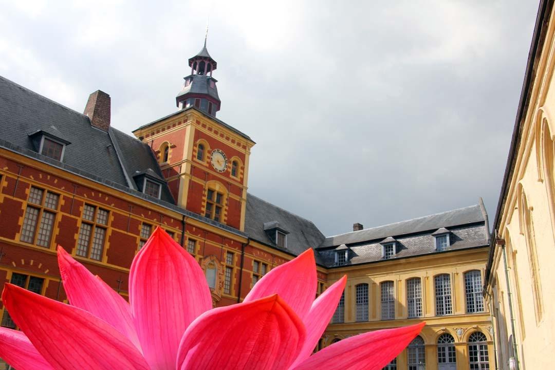 Hospice Comtesse Lille 3000 Renaissance