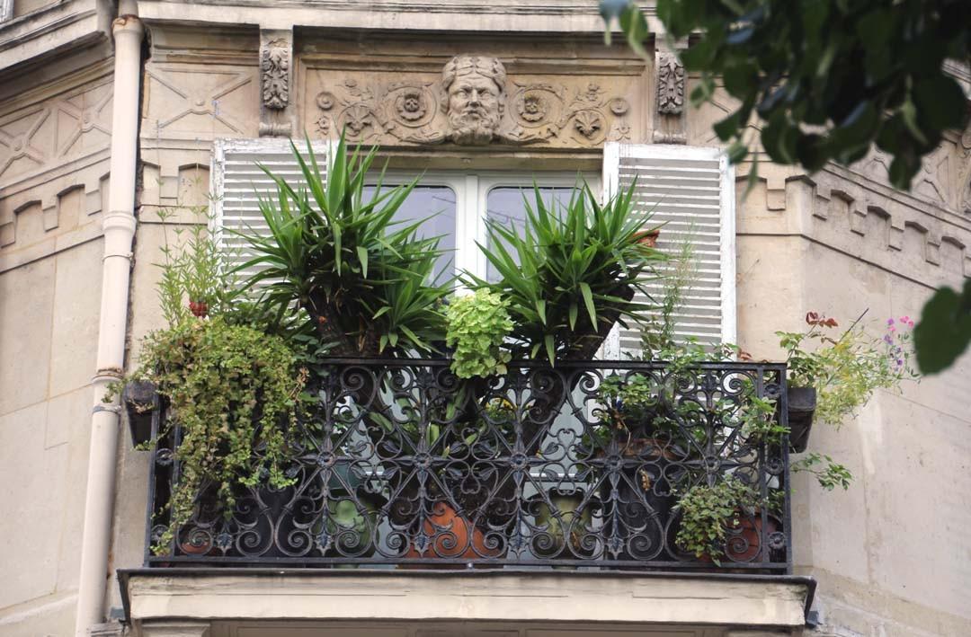 balcon parisien fleuri
