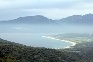 Route pour Belvédère Campomoro en Corse