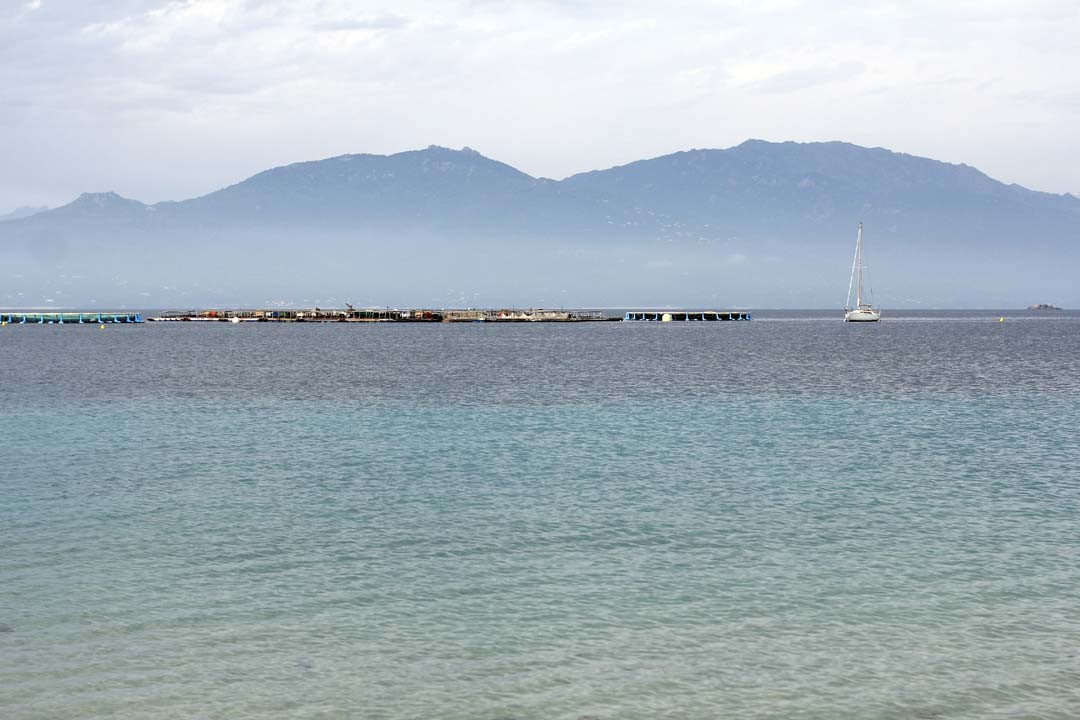 Plage de Belvédère Campomoro en Corse