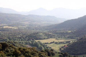 Vallée Rizzanese Corse