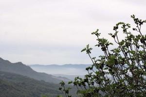 Vue depuis Sartène sur la Vallée du Rizzanese en Corse du Sud