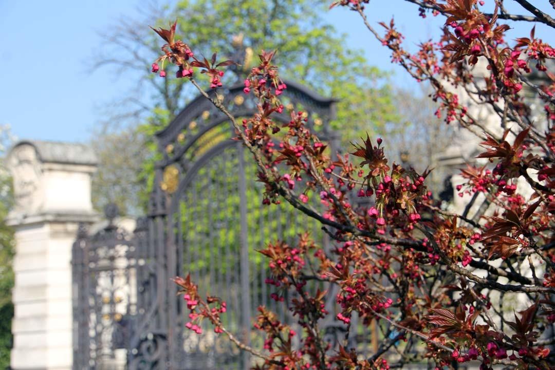 Jardin Serres d'Auteuil Paris