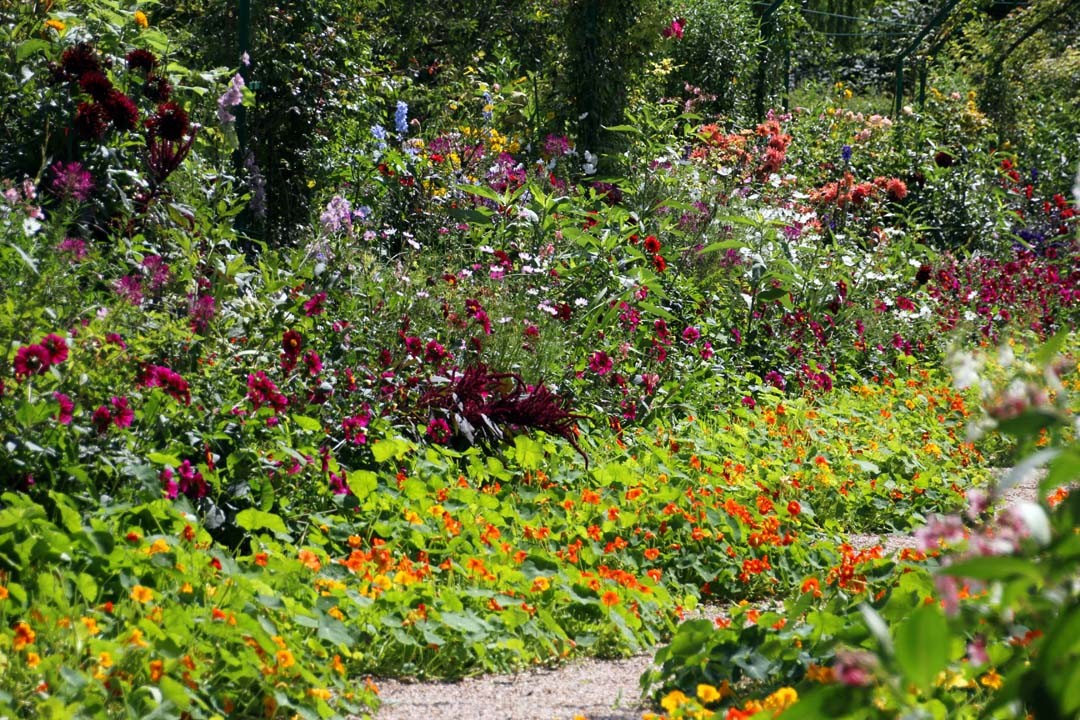 Jardins Claude Monet à Giverny