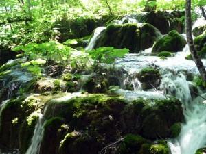 Lacs de Plitvice Parc Naturel Croatie
