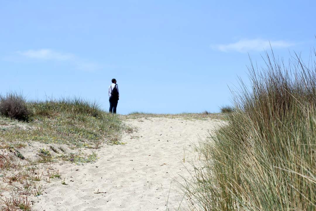 dunes Liamone Corse