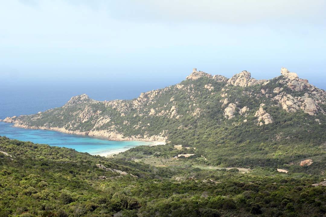 Lion au Cap de Roccapina en Corse