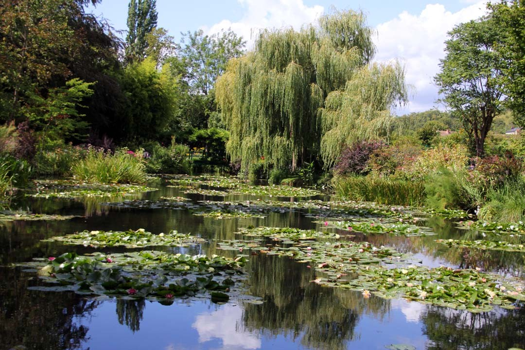 Jardins Claude Monet à Giverny bassin nympheas