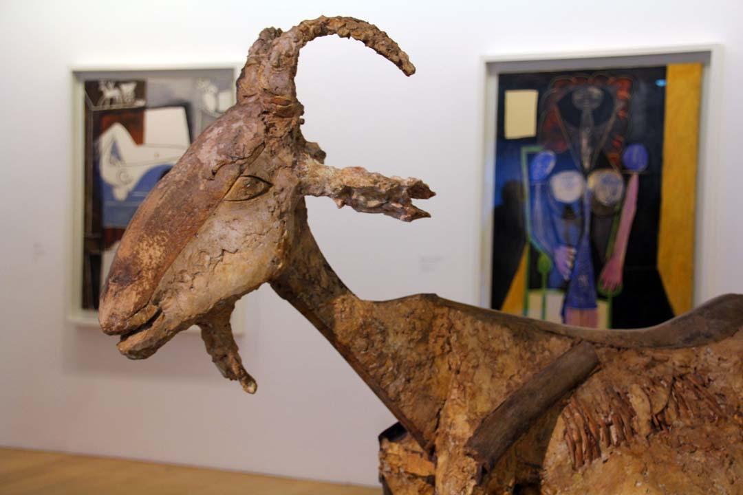 Chèvre Musée Picasso à Paris