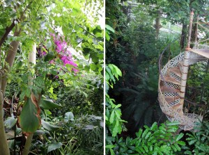 Serre Jardin botanique de Copenhague
