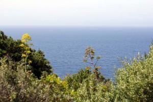 Vue sur la Mer Mediterranée