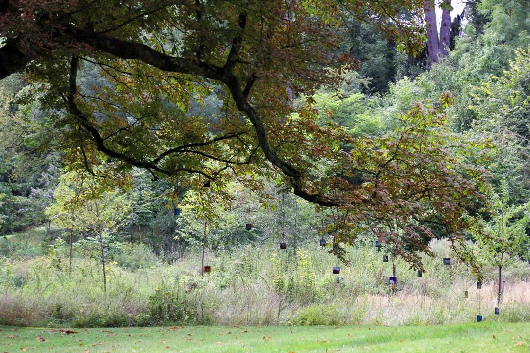 Exposition sur un arbre