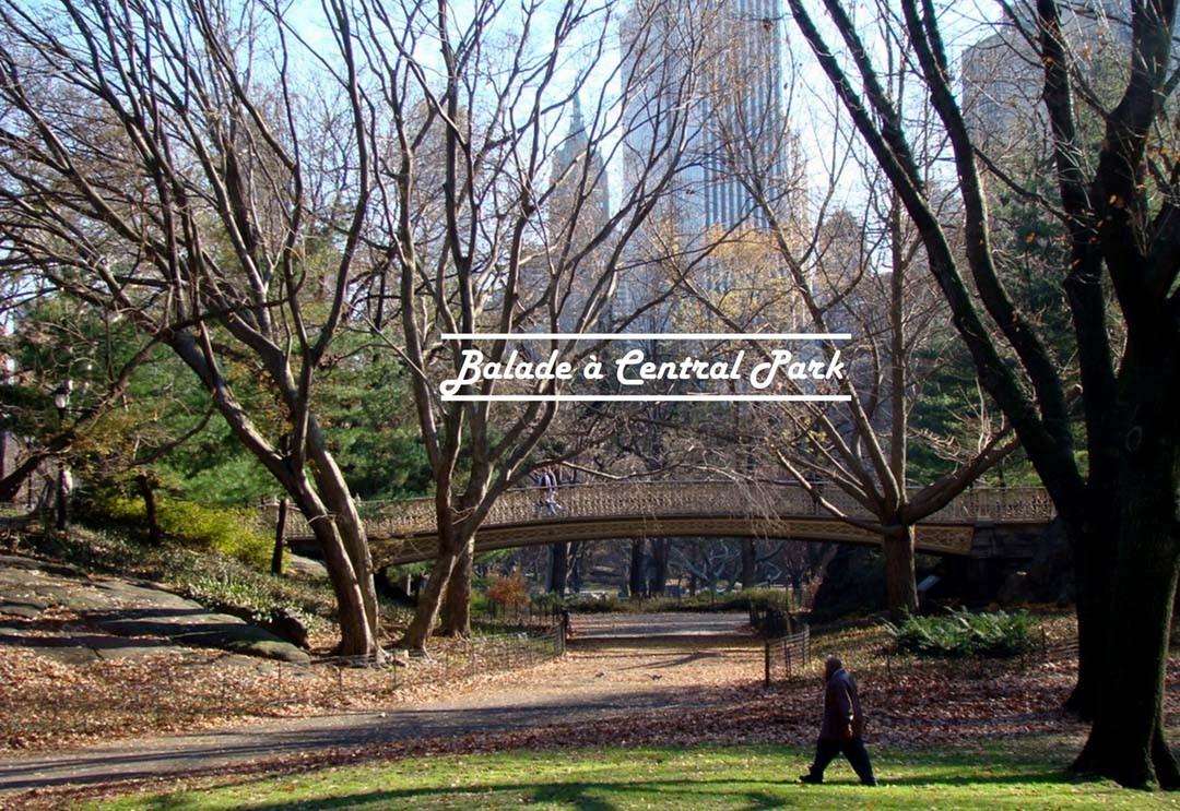 Balade à Central Park