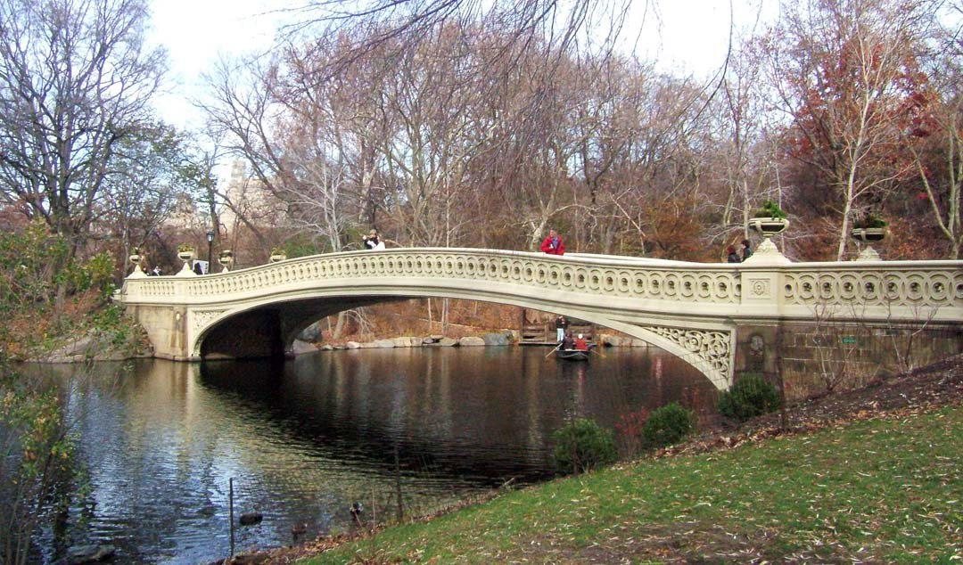 Pont Central Park New York