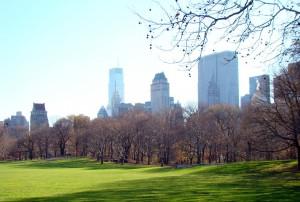 Vue Central Park New York