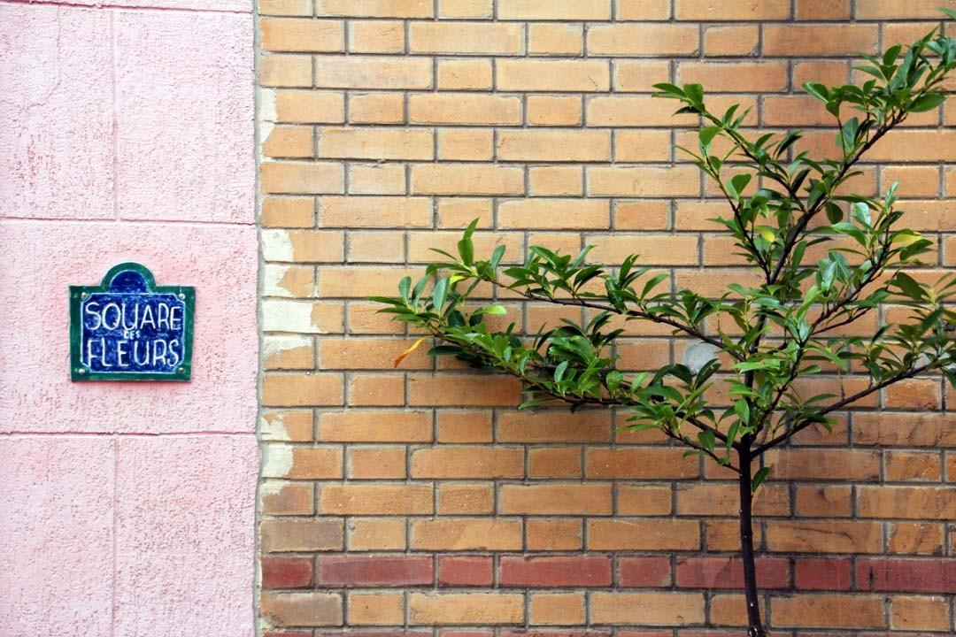 Square des Fleurs à Paris
