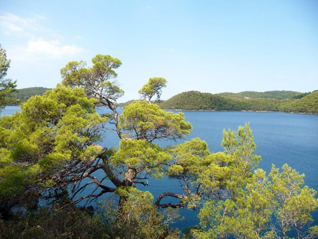 île de Lokrum à Dubrovnik
