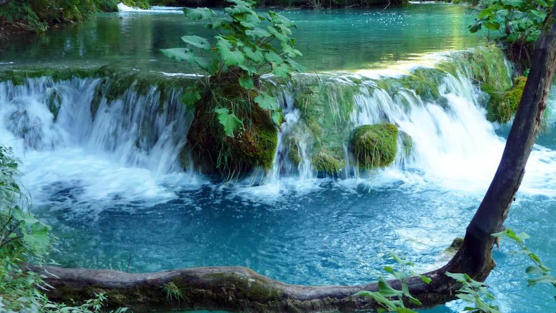 Lacs de Plitvice en Croatie