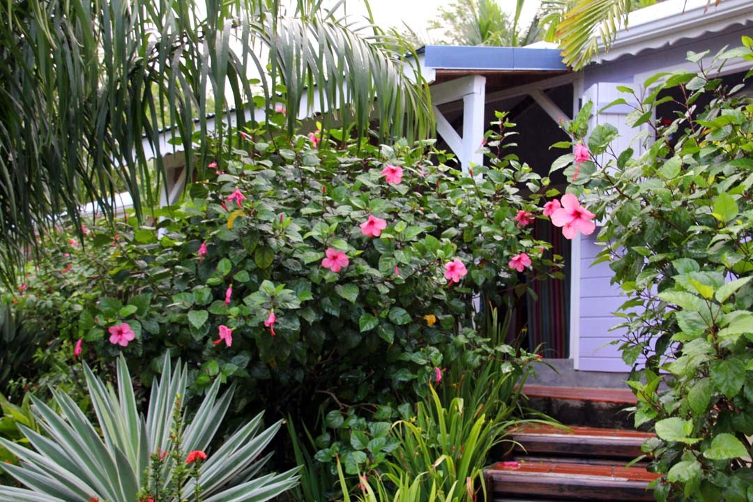 Hôtel case en Guadeloupe