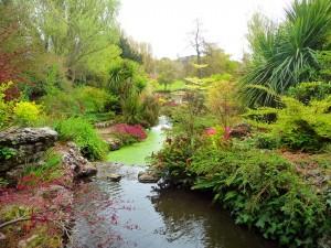 Jardin Manoir de Samarès à Jersey