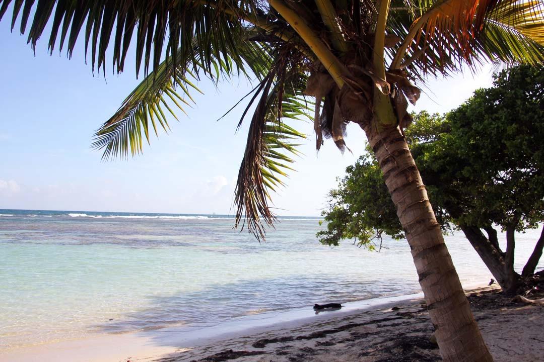 Plage Bois Jolan en Guadeloupe