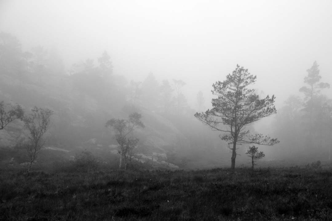 Randonnée Preikestolen en Norvège