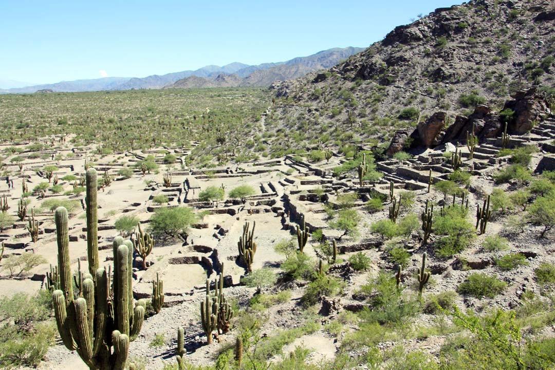 argentine road trip salta vallées Calchaquies Ruines de Quilmes