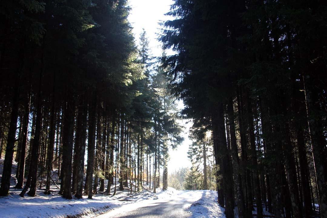 Route enneigée Ain Montagnes du Jura