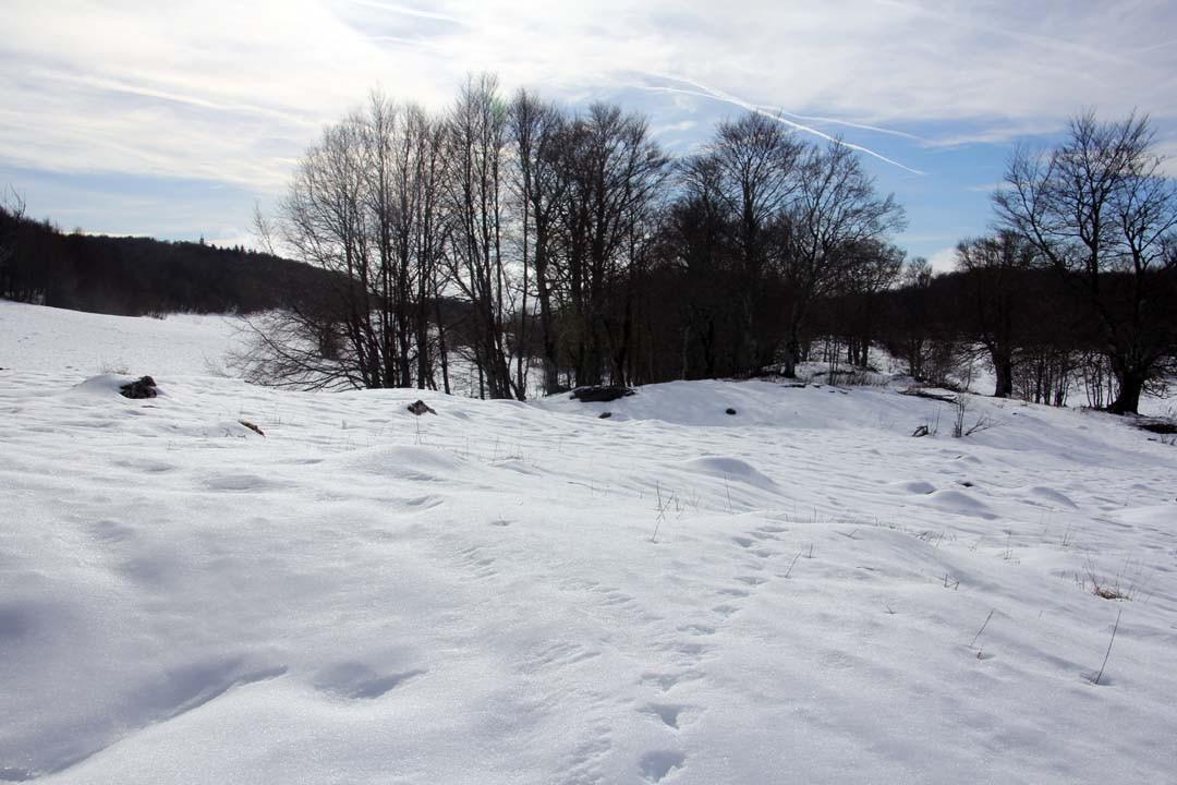 Sentier de randonnée en raquettes