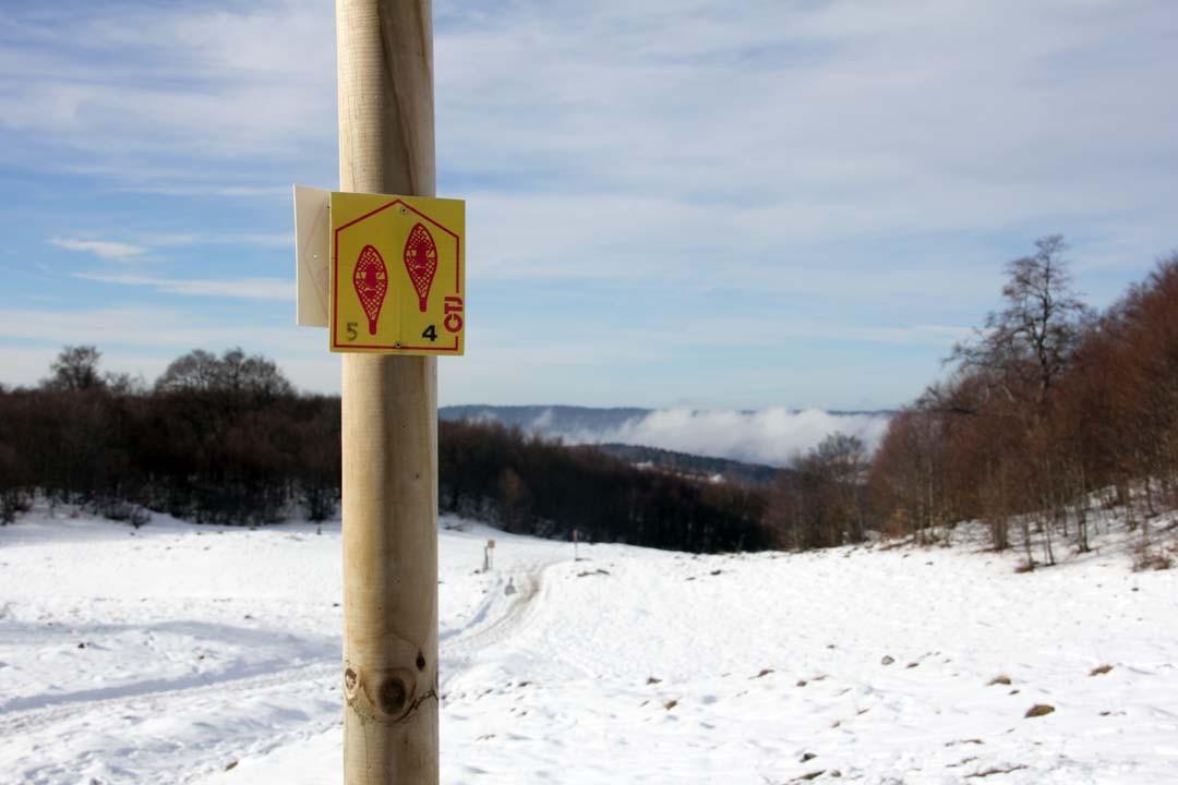 Sentier de randonnée en raquettes à la montagne dans l'Ain