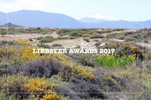 Liebster Awards 2017