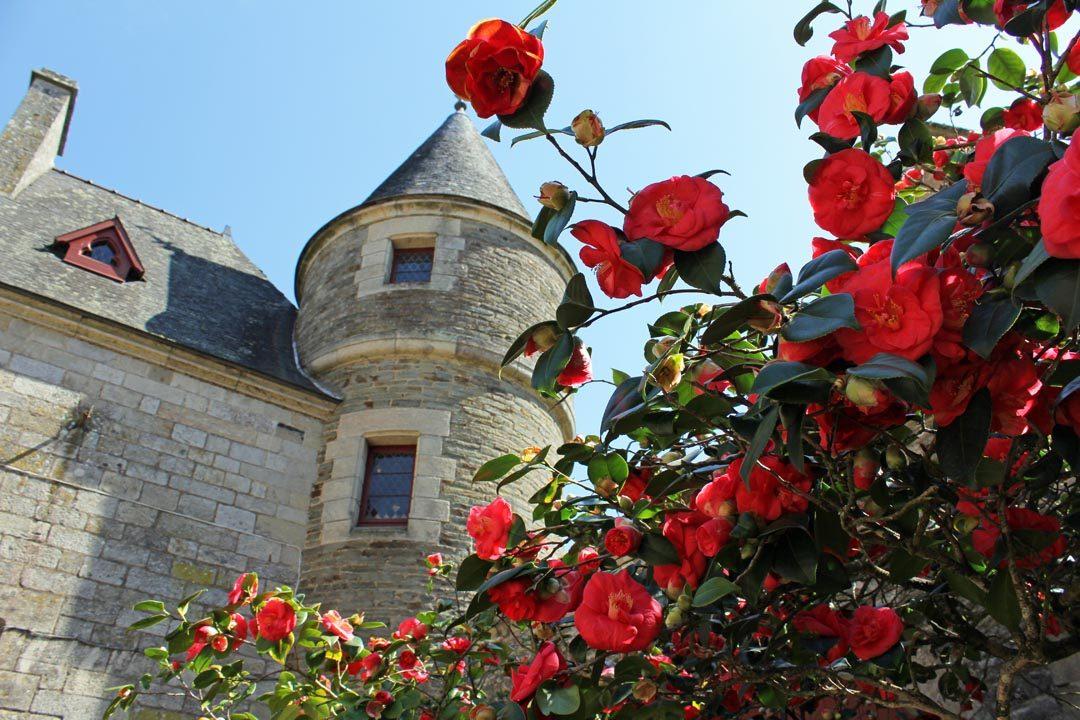 Château de Josselin à Brocéliande