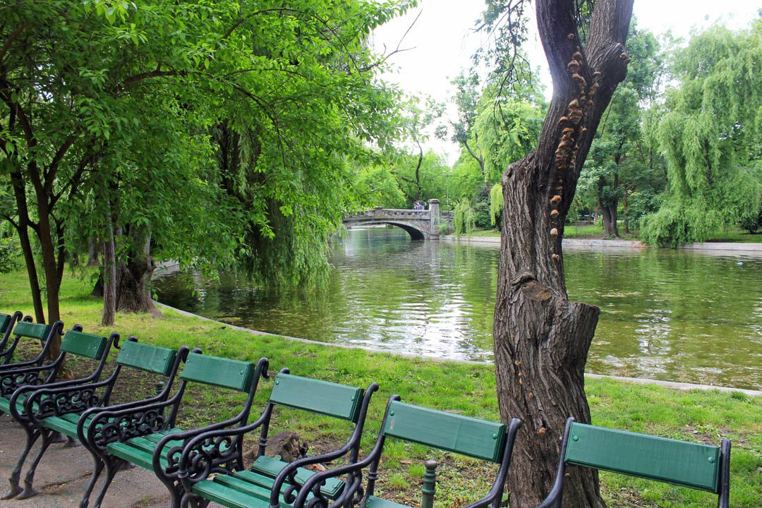 Parc Cismigiu à Bucarest