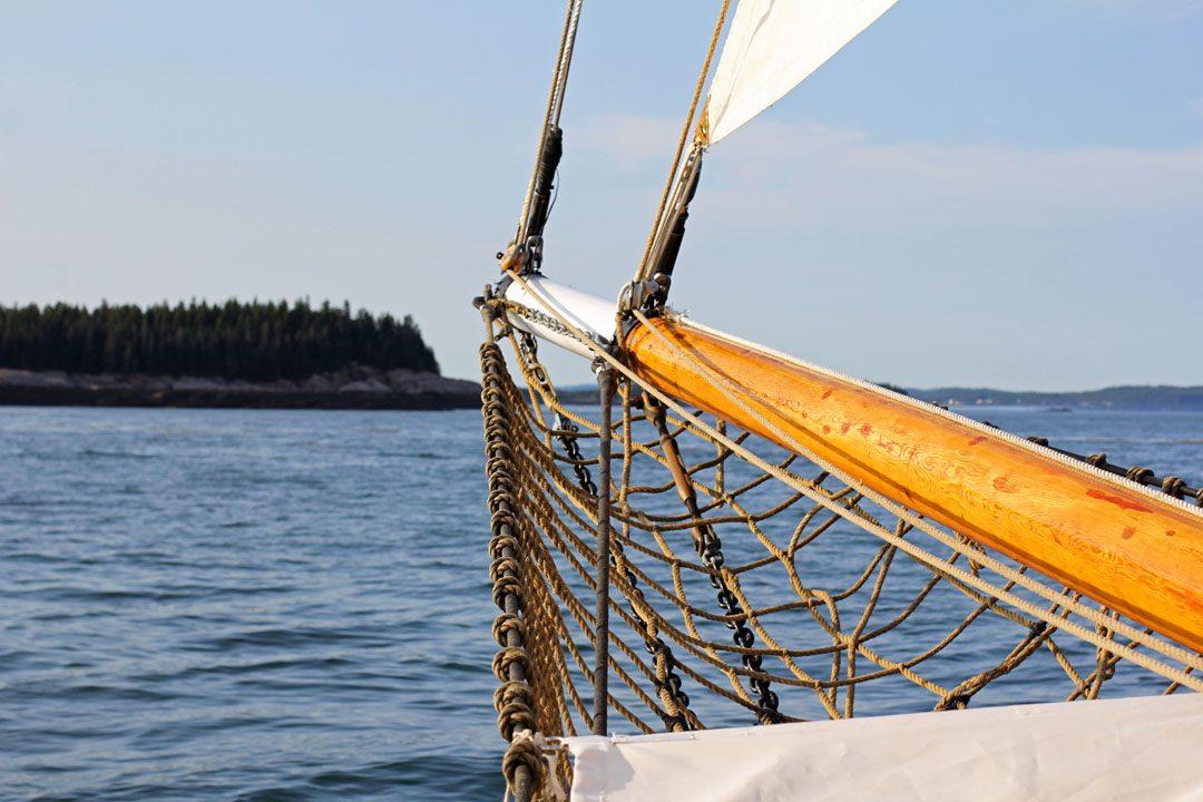 Croisière à la rencontre des baleines à Saint Andrews au Canada