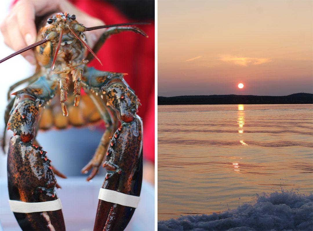 Croisière à Saint Andrews by the sea au Canada et homard bleu du Nouveau Brunswick