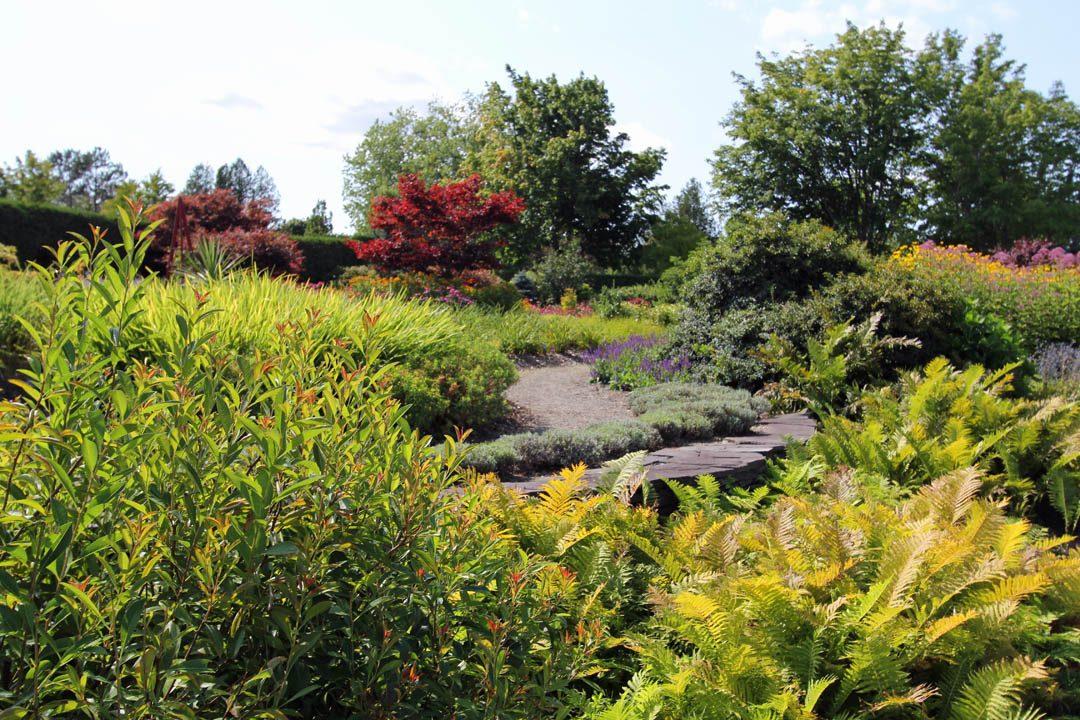 Jardin botanique Kings Brae