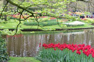 Parc Keukenhof aux Pays-Bas