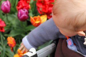 Parc Keukenhof aux Pays-Bas avec bébé