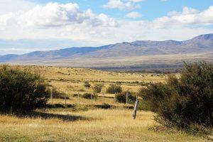 Paysage de Patagonie, pampa argentine