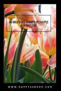 Au milieu des champs de tulipes aux Pays-Bas   www.happyusbook.com