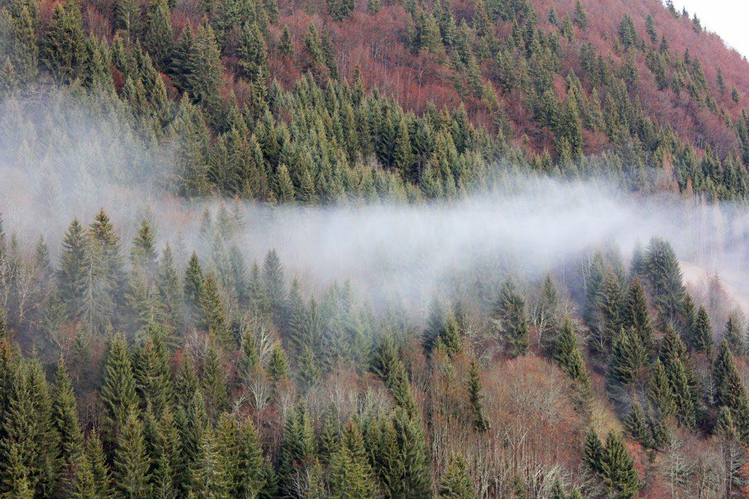 Montagne embrumée - Station Saint Jean d'Aluns Hautes-Alpes