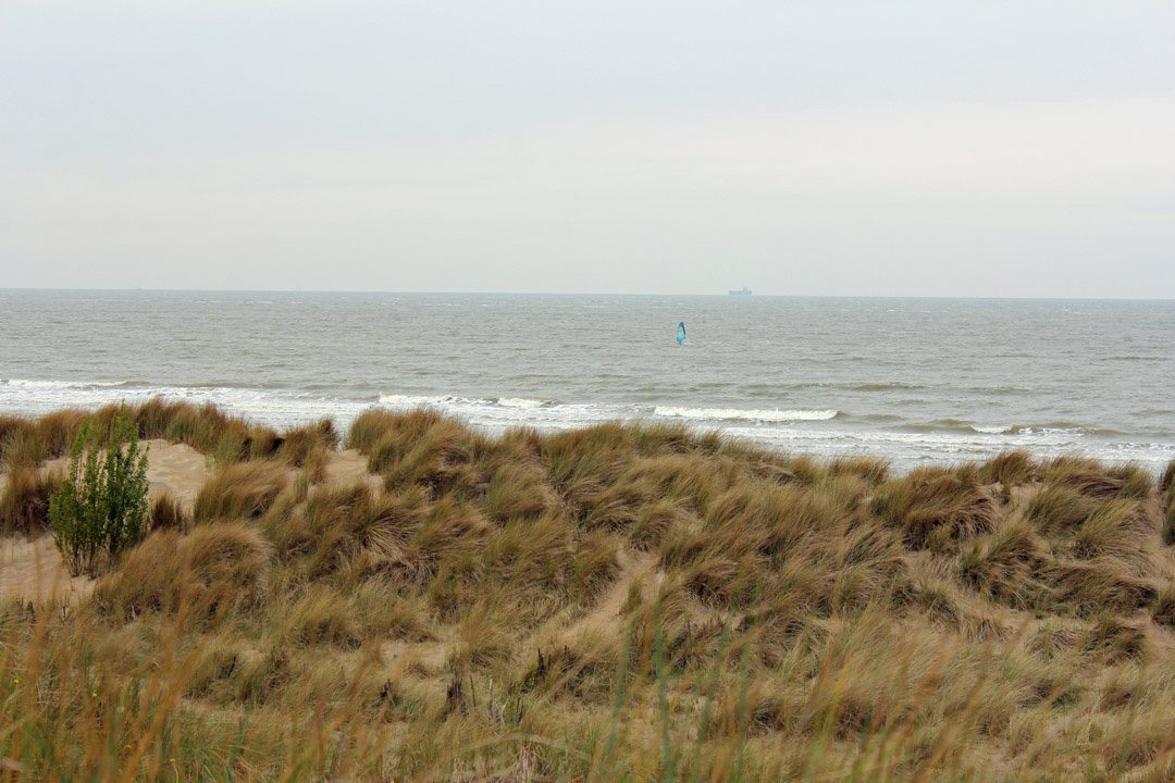 Dunes à Zeebruges en Belgique