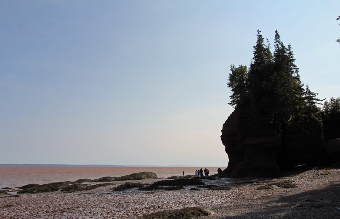 Le parc national de Fundy au Nouveau-Brunswick