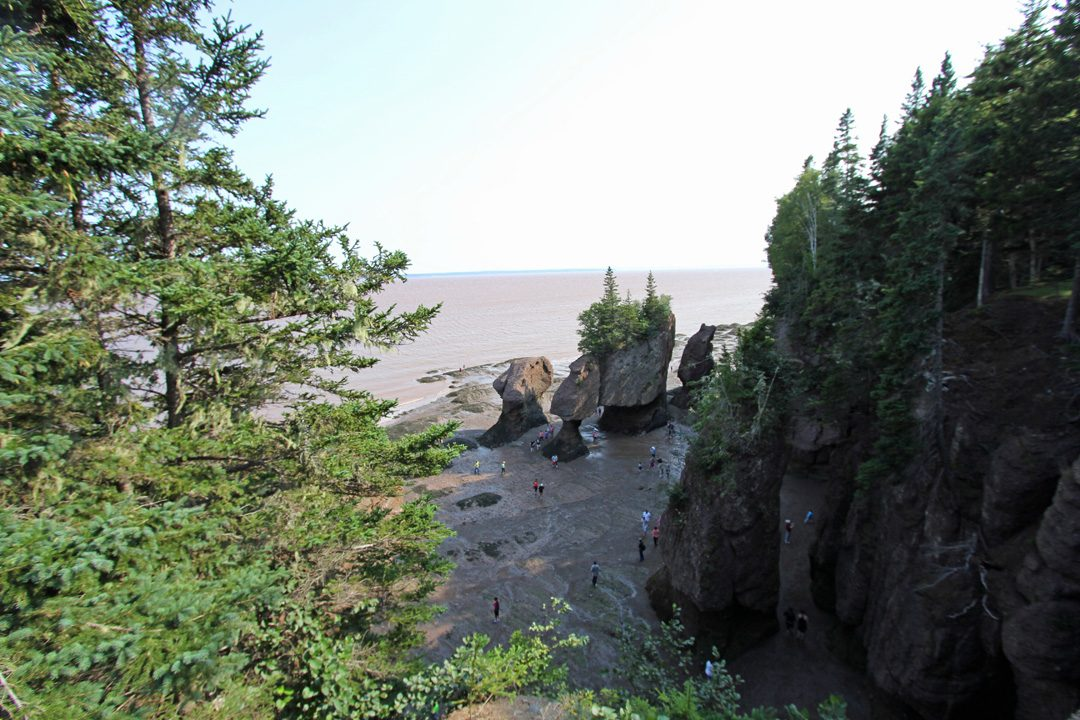 Le parc national de Fundy au Nouveau-Brunswick au Canada