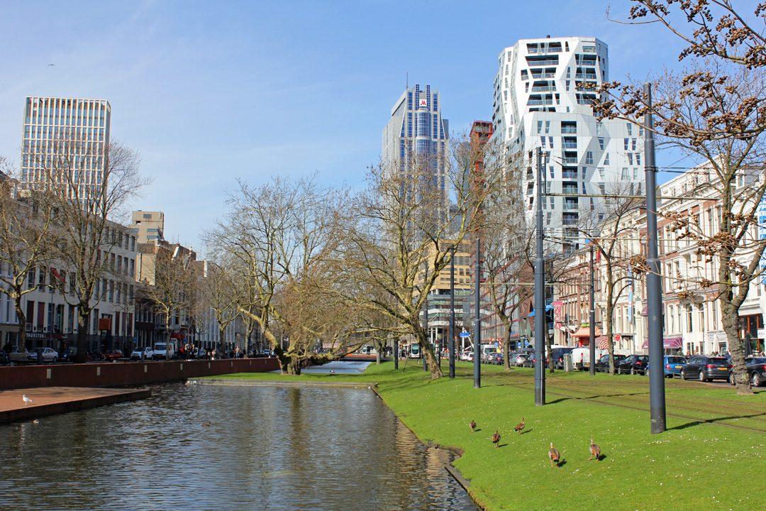 Sur le bord du canal à Rotterdam