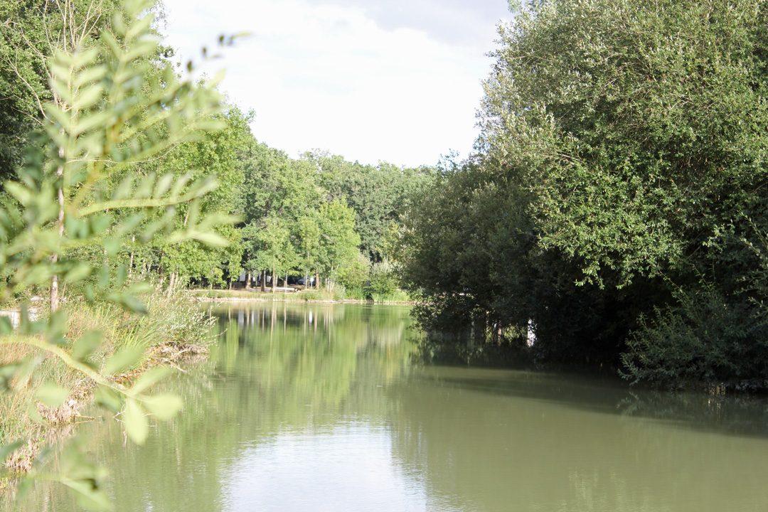 Etang du Domaine de la Héronnière