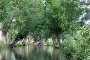 Balade en barque dans le Marais Poitevin en famille