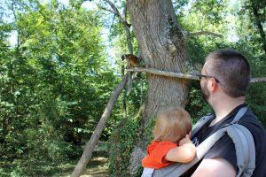 Visiter la vallée des singes avec un bébé
